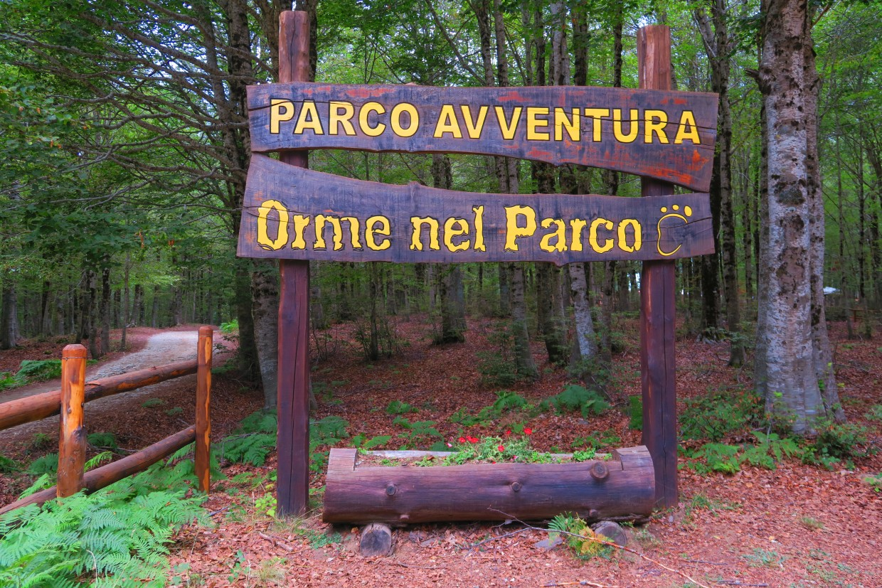 Orme nel Parco - The forest as you have never seen it